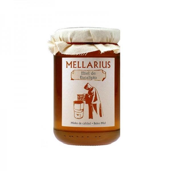 Miel de eucalipto Mellarius